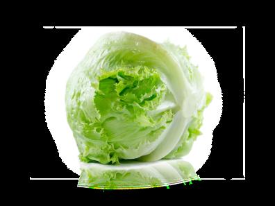 Isbergsalat