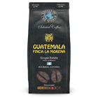 Guatemala Finca la Morena