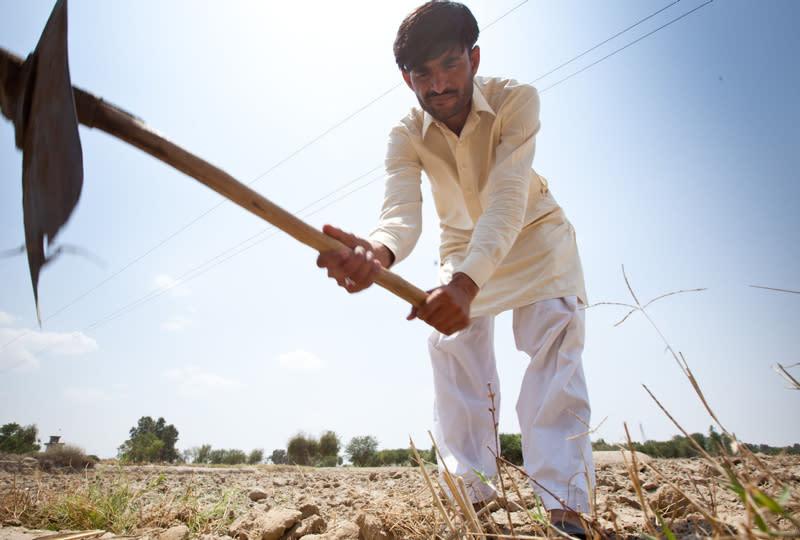 Artikkelbilde_Oxfam_bondene-i-pakistan.jpg