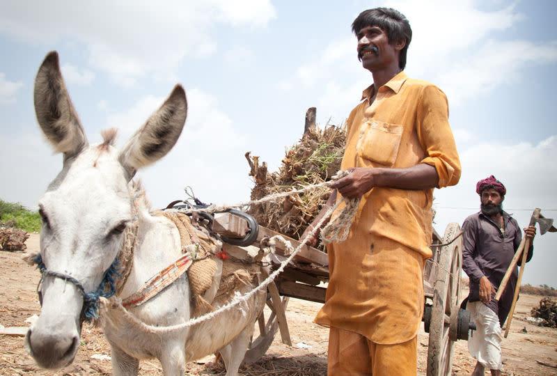 Artikkelbilde_Smaskalabonde_Oxfam.jpg