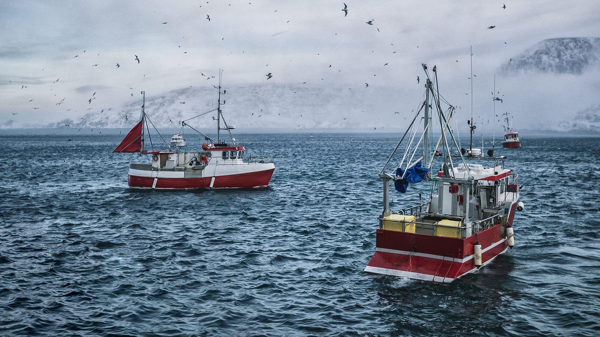 Lofotfiske.jpg