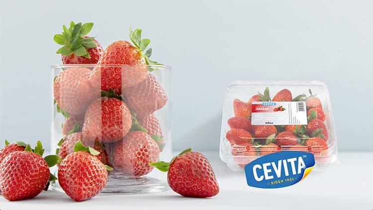 """Jordbærene fra Cevita er det nærmeste vi kommer """"norsk"""" smak."""