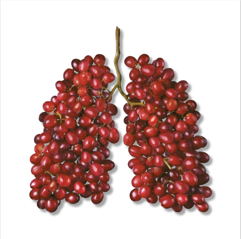Tobakk skader ikke bare lungene, men påvirker konsentrasjon og prestasjon.