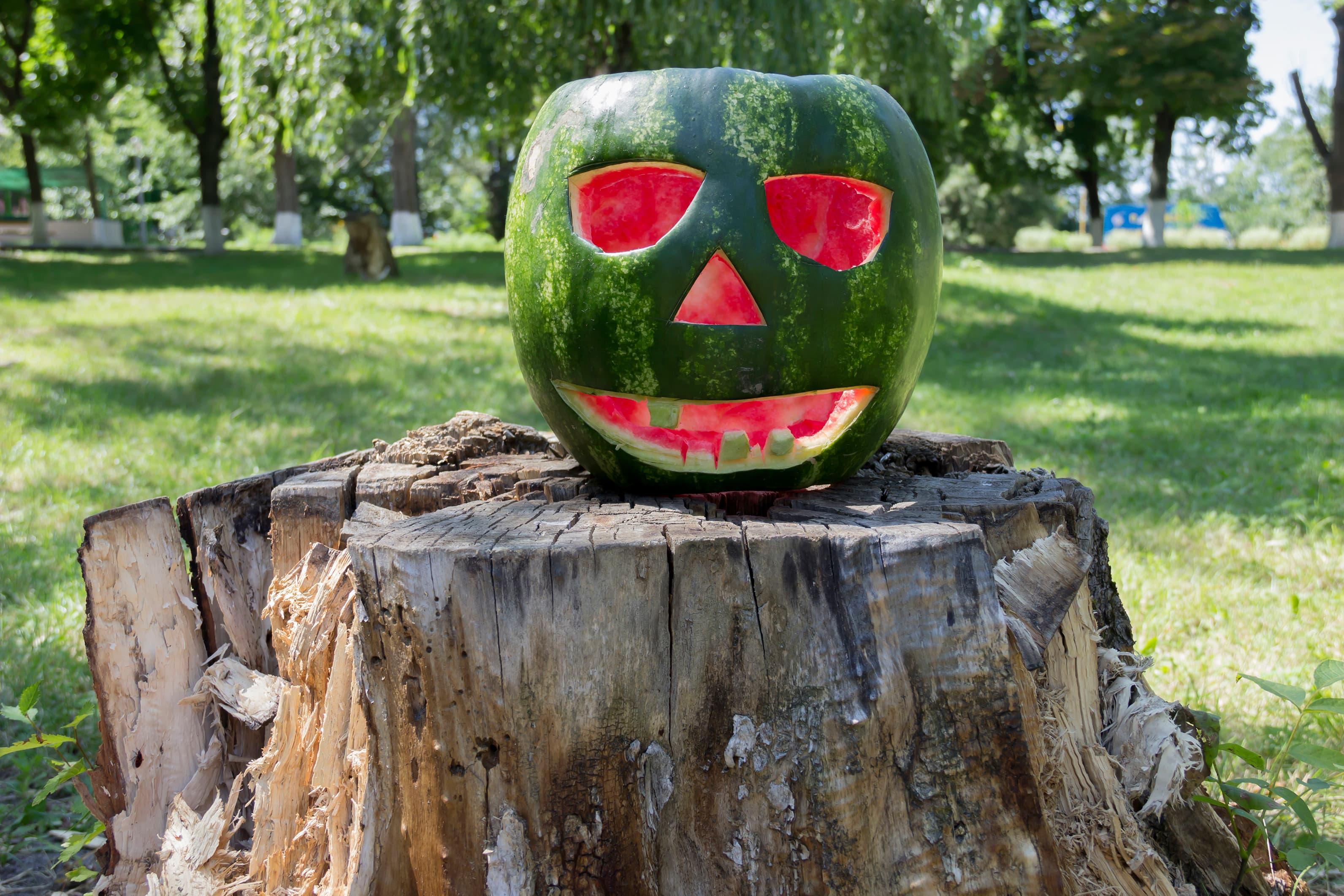 Også en hel vannmelon er et fint alternativ til gresskar. Foto: iStock
