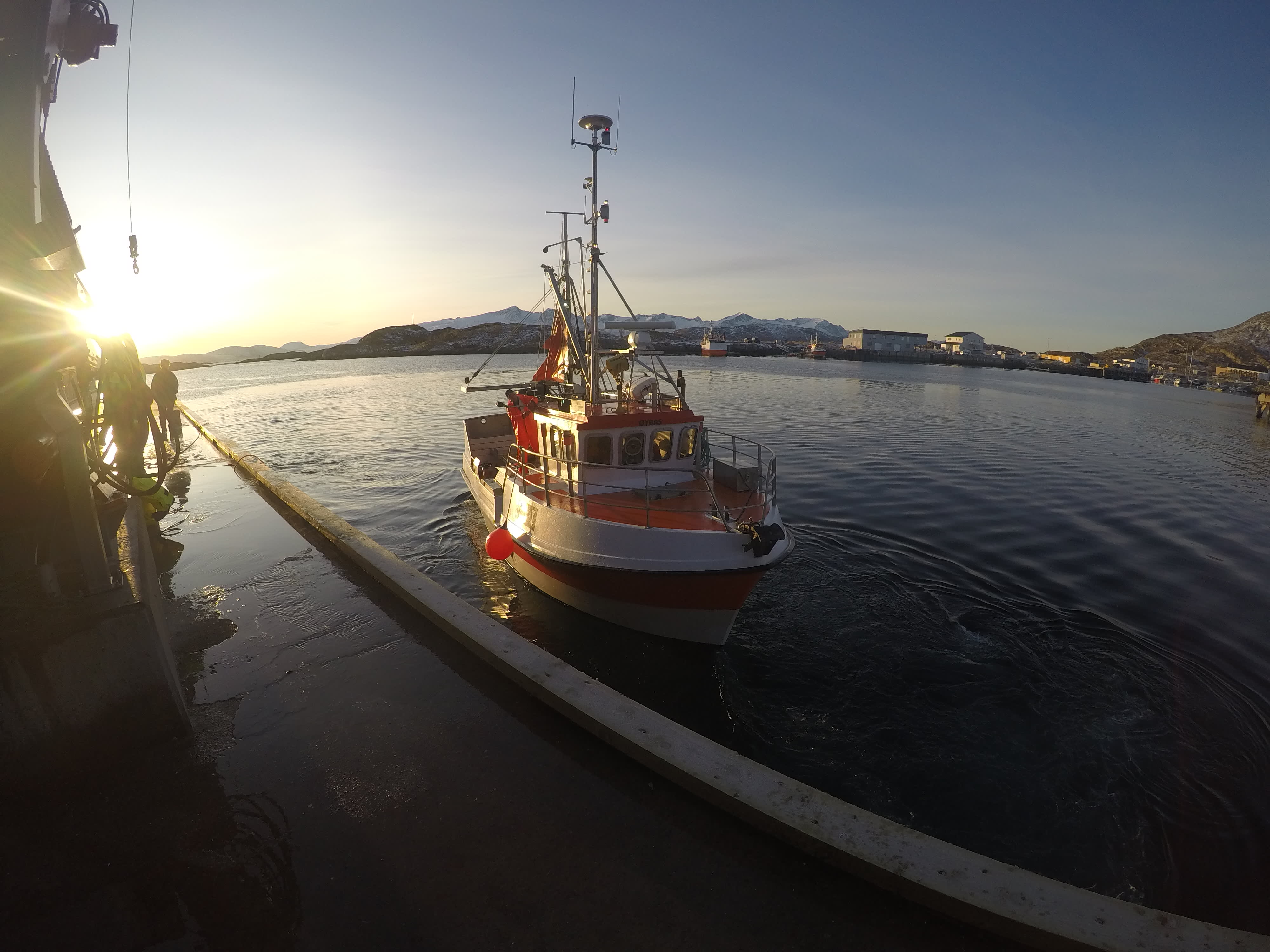 I starten av sesongen returnerer de fleste båtene til hamn i tolvtiden.