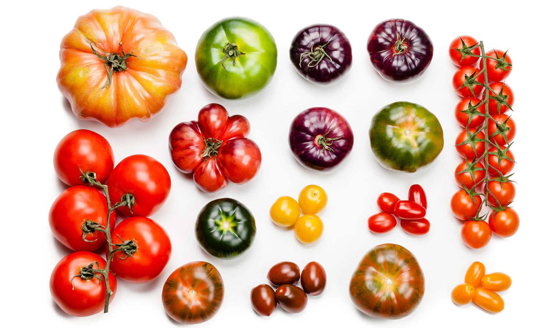 Tomater finnes i mange ulike størrelser, farger og fasonger. Felles for de alle er at de er supersunne!