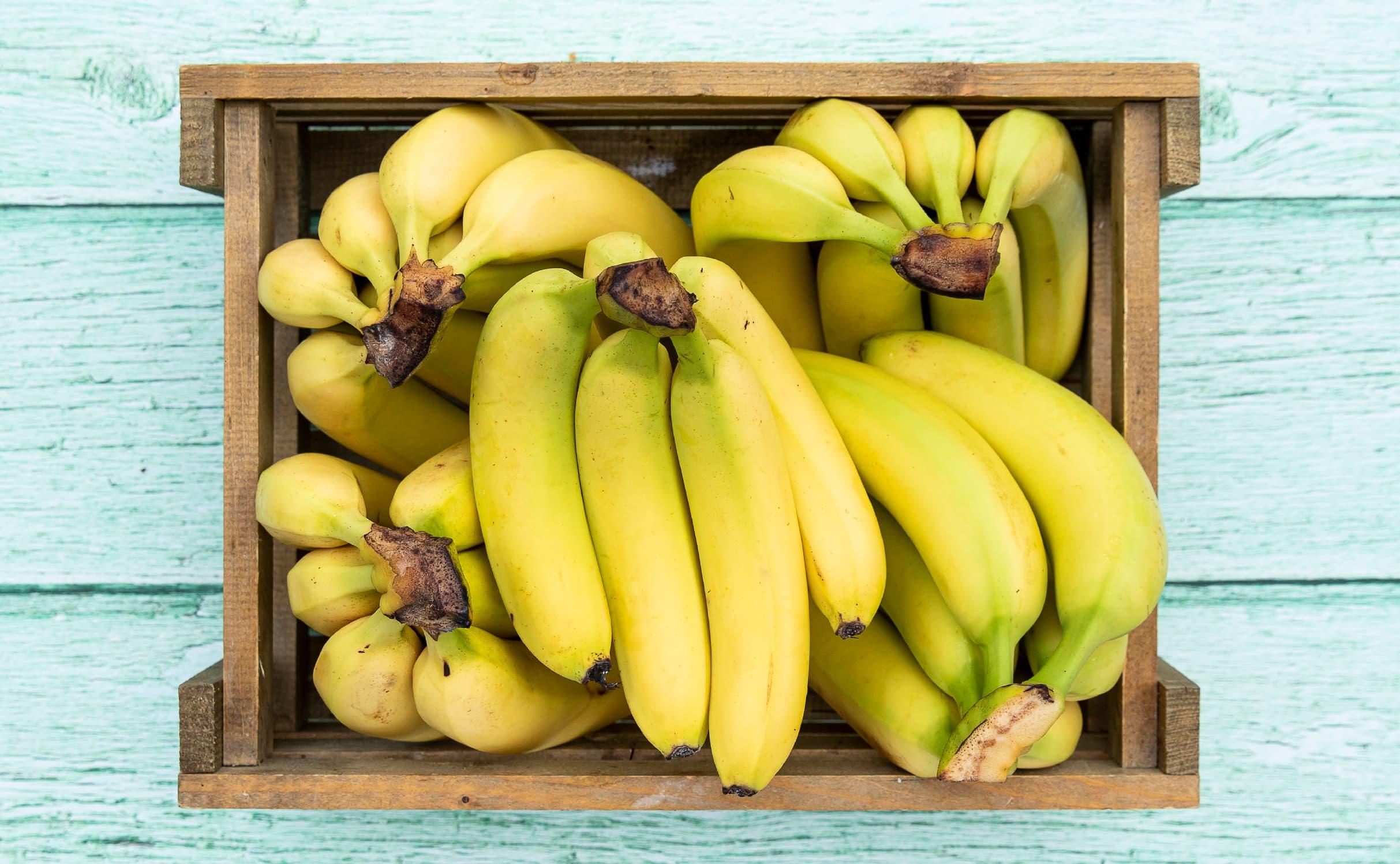 bananer.jpg
