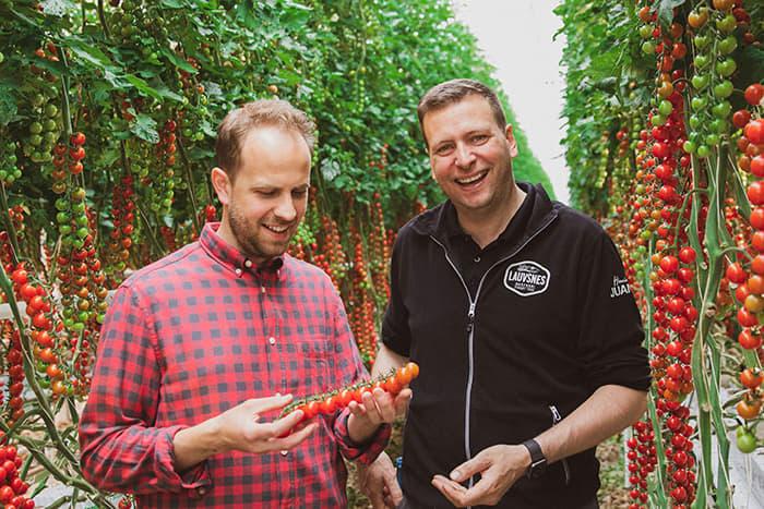 Gartners kokk Jan Robin Ektvedt og tomatprodusent Jan Terje Vignes i Ryfylke.