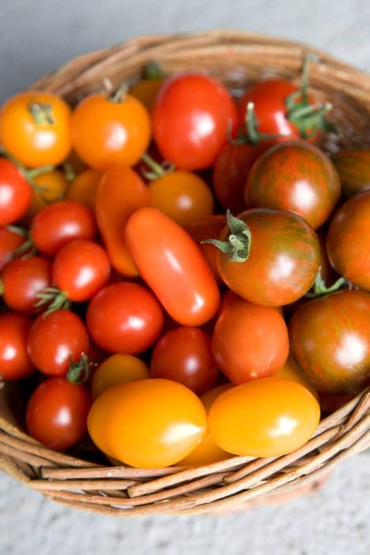 Plomme- og cherrytomater er perfekte snackstomater når man har lyst på noe godt