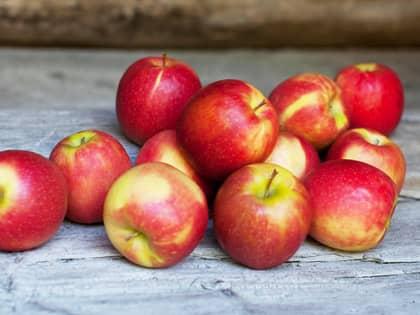 Dette er de norske eplesortene