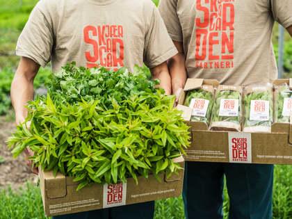 God jord gir gode urter