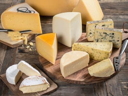 Alt om de syv ostefamiliene