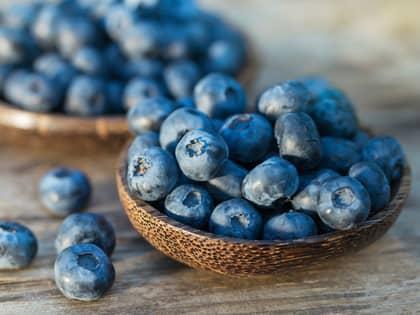 Nyttig fakta om blåbær