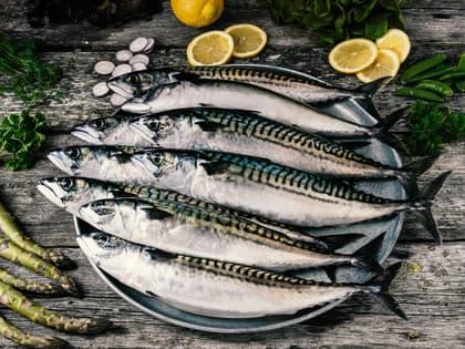 Slik tilbereder du makrell og pir