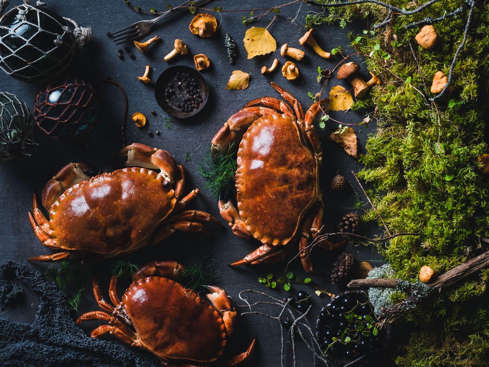 Endelig tid for krabbe