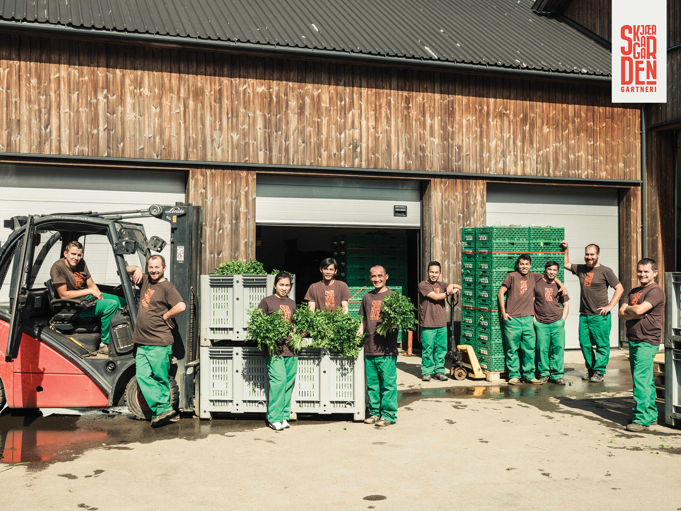 Familiebedriften har hele produksjonen på gården, fra frø til forbrukerpakning. I sesongen vokser de til 35 ansatte fra hele verden.