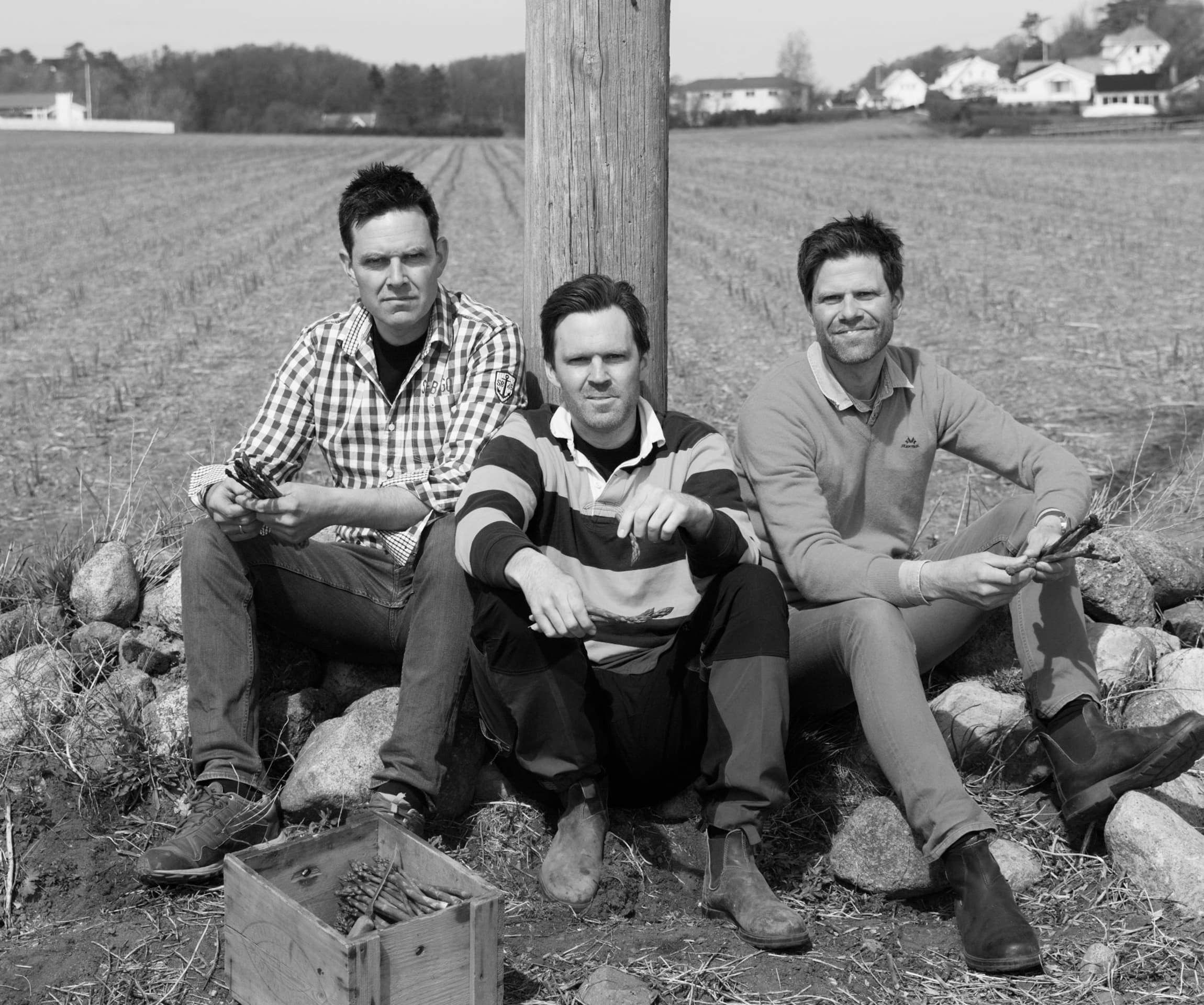 Bernt, Edvart og Anstein Freberg