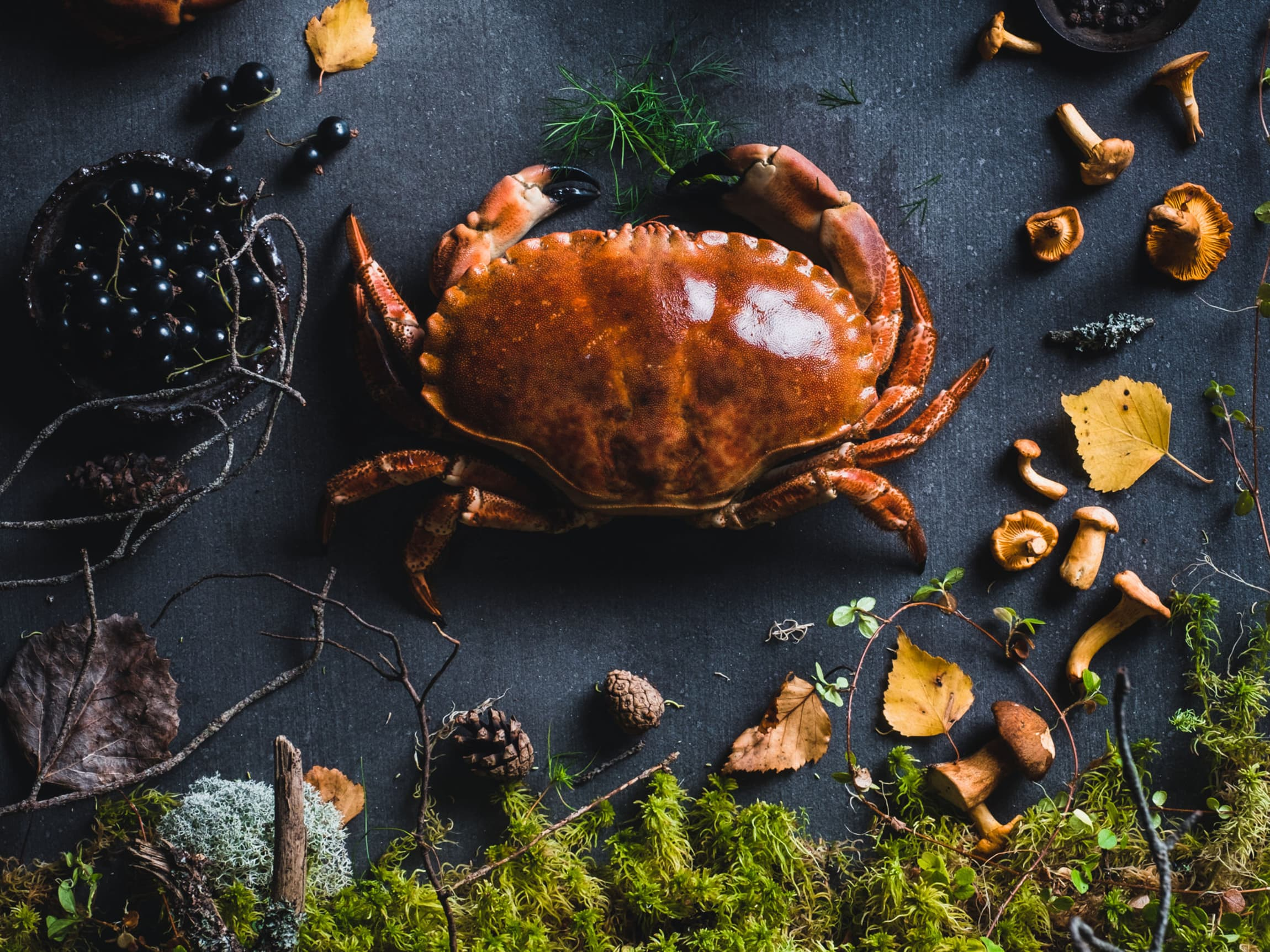 Krabbe, kantarell og ulike skogsbær er noe av de lekre råvarene høsten kan by på.