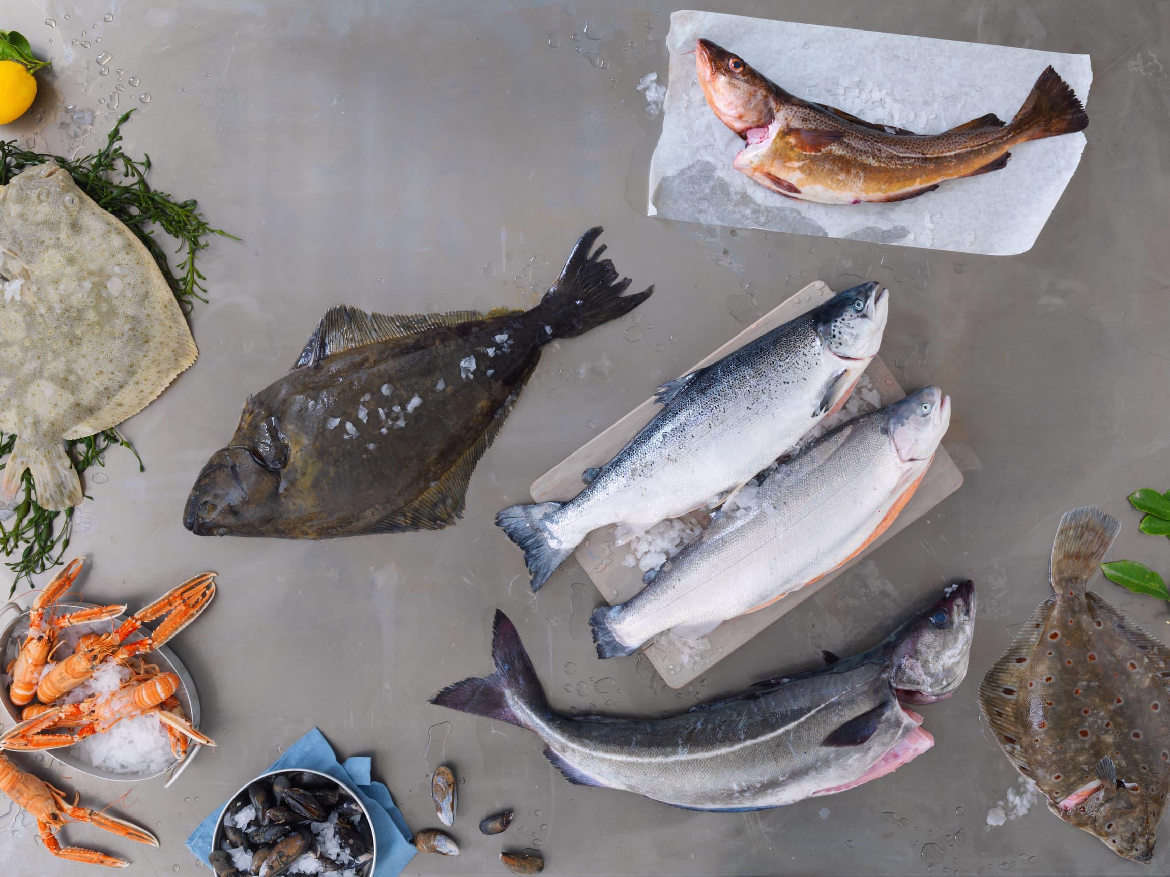 Kveite, piggvar, rødspette, torsk og ørret er noen av fisketypene du kan finne i fiskedisken