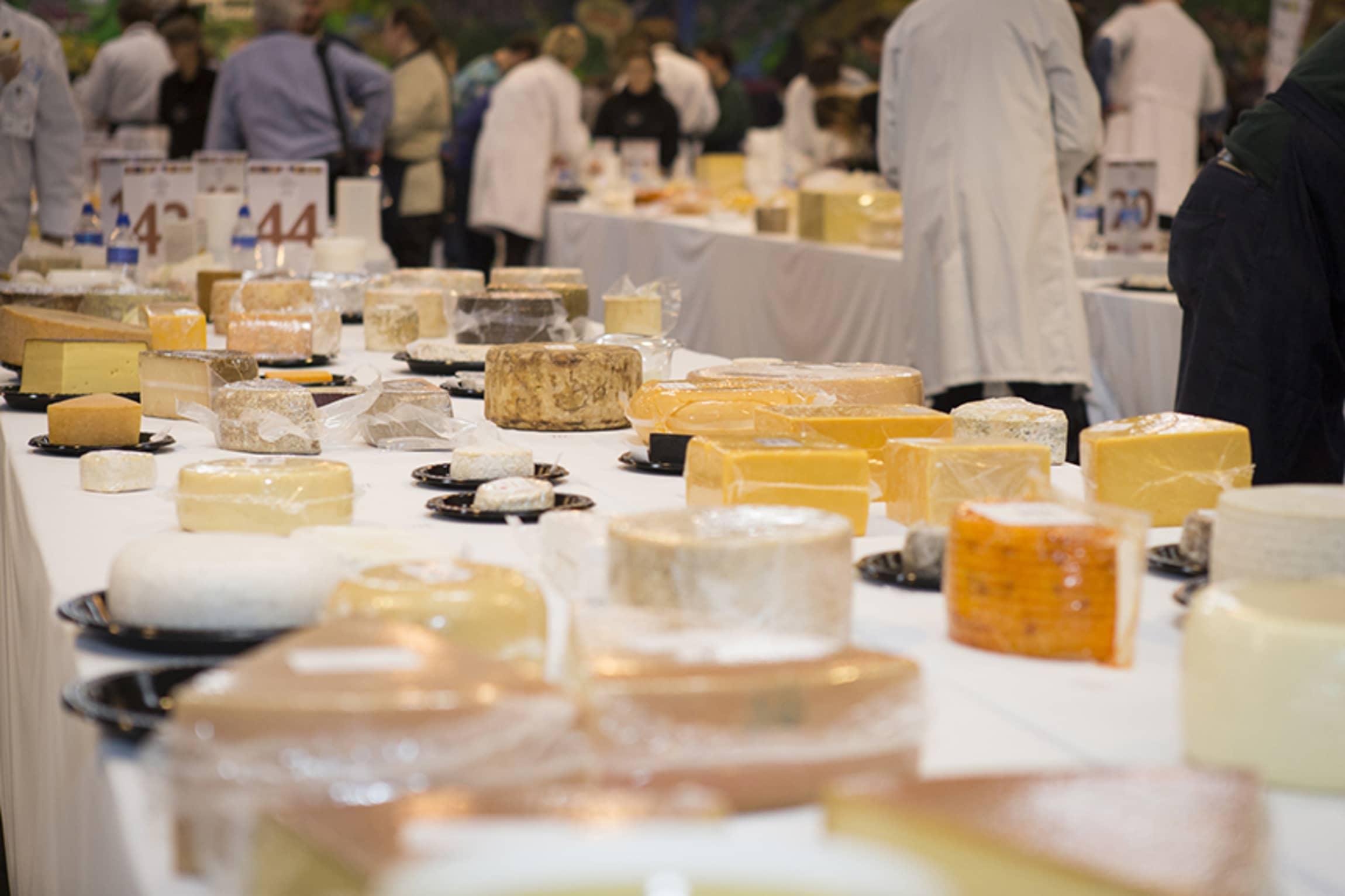 I team på 3-4 smaker dommerne seg gjennom ostene.