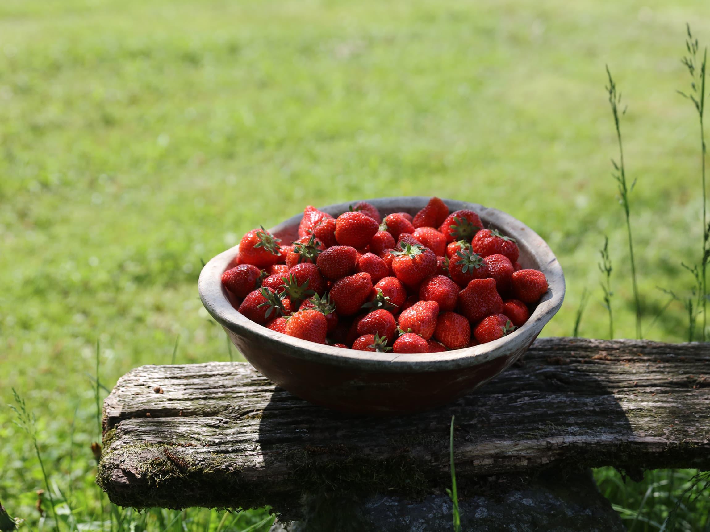 Jordbær fra Vestfold