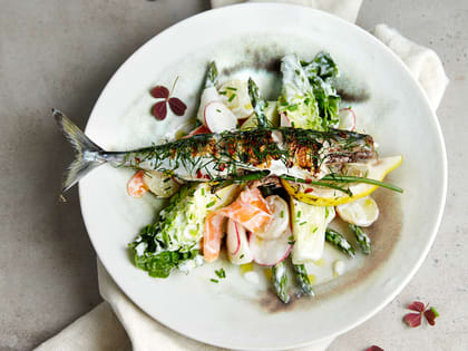 Grillet makrell med primørsalat