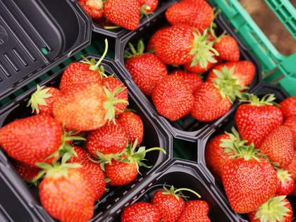 Nå kan du kjøpe syltebær hos MENY