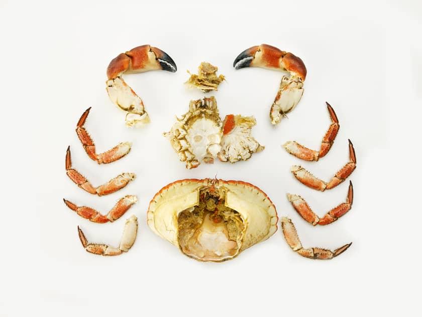 Slik renser du krabbe