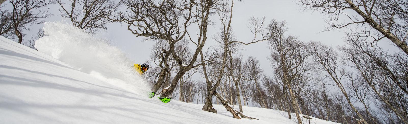 Lofoten style skiing
