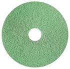 Nilfisk pad Eco Brilliance 14 grønn 355mm (2)