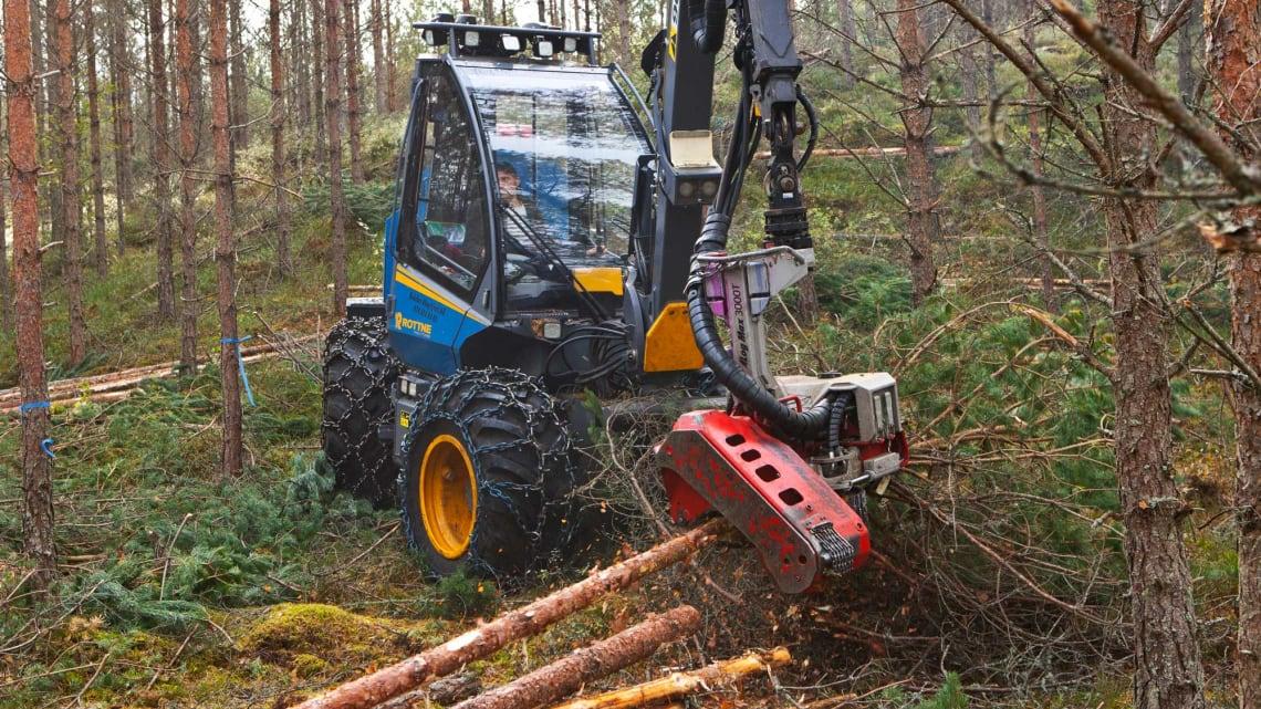 Hold god avstand til skogsdrifter!