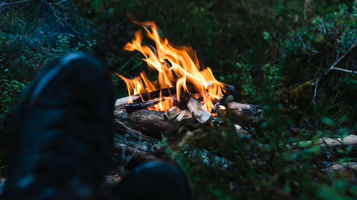 Bålbrenning i skogsmark? Kun i den kalde årstida!