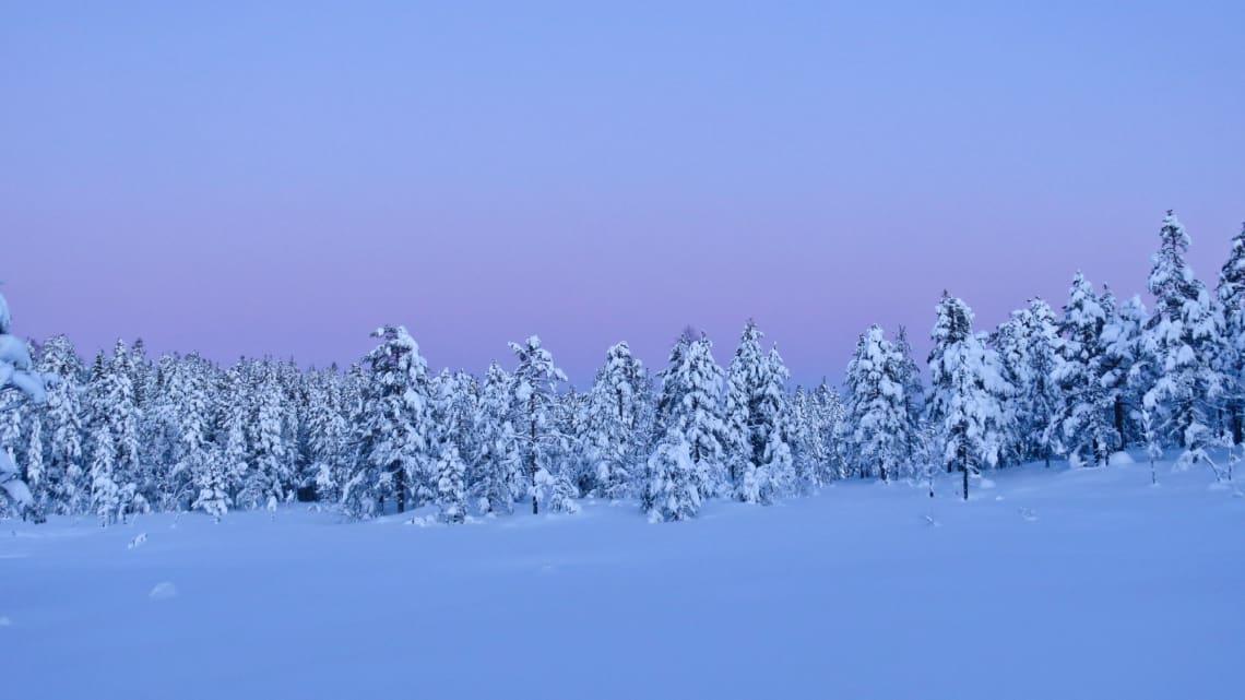 Klimaforsker varsler kald januar måned