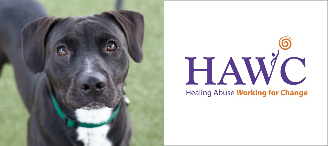 HAWC: Healing Abuse Working for Change