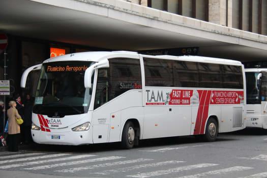 Autobús TAM en Roma