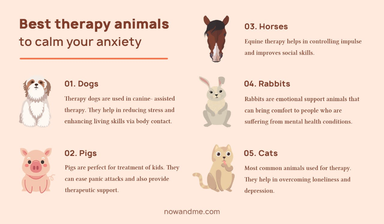 picture describing types of therapy animals