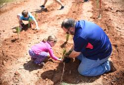John DeKemper, assistant director at Cornelius Parks, Arts, Recreation and Culture (PARC), working with kids to plant saplings at an Earth Day event. Photo courtesy of Karen Ulmer.