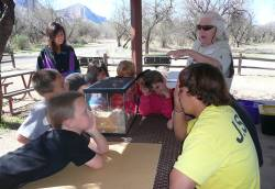 Lynanne Dellerman-Silverthorn (back left), recreation and cultural services manager for Town of Oro Valley, overseeing nature camp activities. Photo courtesy of Nancy Ellis.