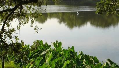 Climate Statement City Park 410x410