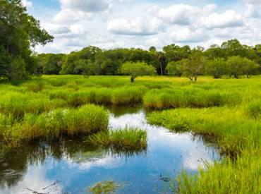 2017 February Preserving Landscapes 410