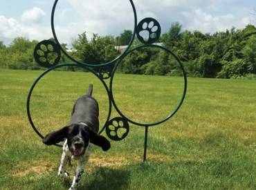 2018 November Feature Innovative Dog Parks 410