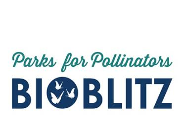 2019 April NRPA Update BioBlitz 410