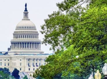 Advocating for Green Infrastructure 410