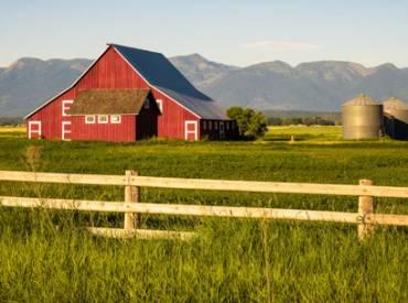 Farm Bill 410