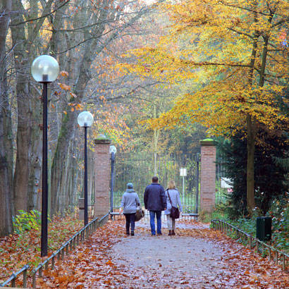 2016 park walk