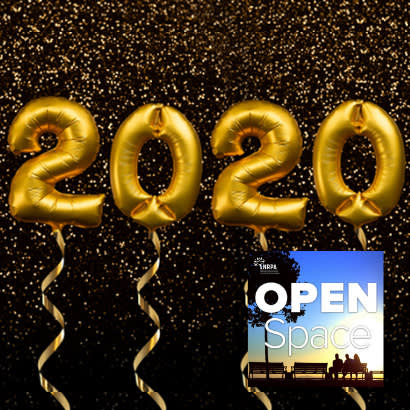 2020 Resolutions Podcast 410