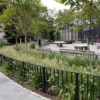 2021 April We Are Parks and Rec Planting Design at NYC Parks 410