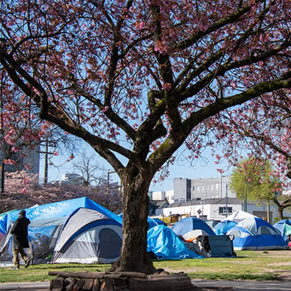 2021 February Law Review Sweeps of Homeless Encampments in Parks During COVID 19 410