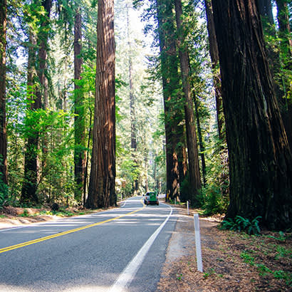 2021 May Law Review Environmental Review of State Park Highway Widening 410