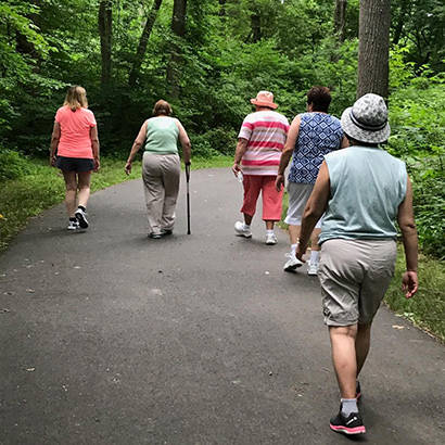 Arthritis Older Adults 410
